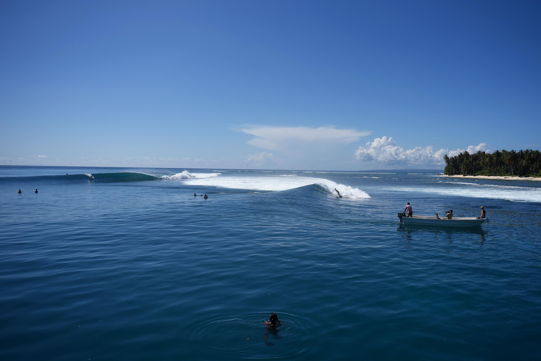photo de surf 17798