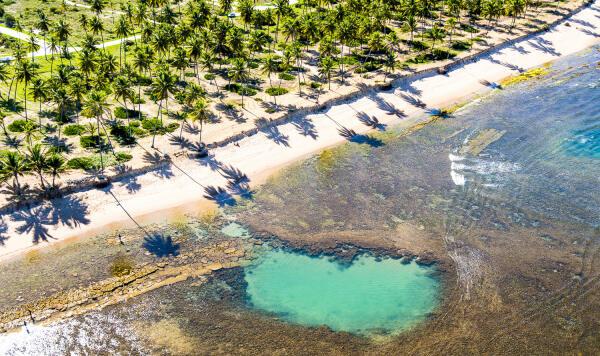 Praia do Forte Pro / Brazil